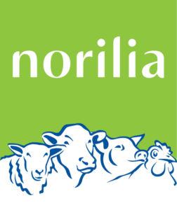 Norilia_logo_ny